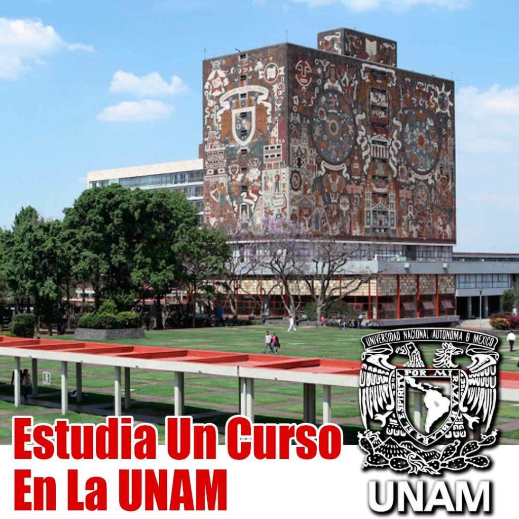 Como estudiar en la UNAM en linea