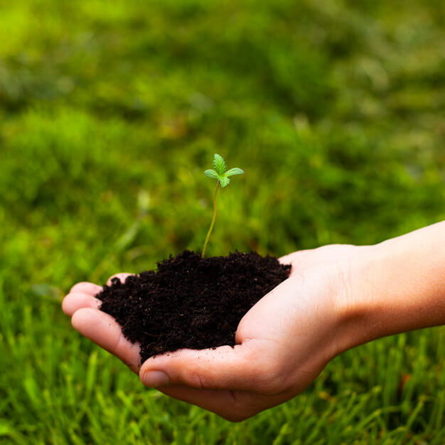 Aprende del Curso Para Fomentar una Cultura Ambiental