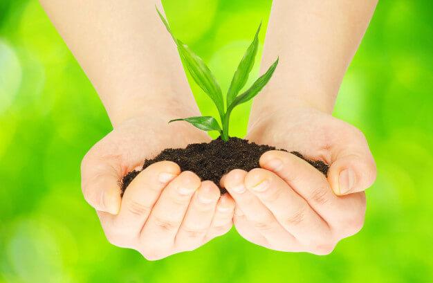 Curso de Cultura Ambiental en Video gratis.